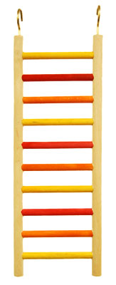 SMALL LADDER LONG